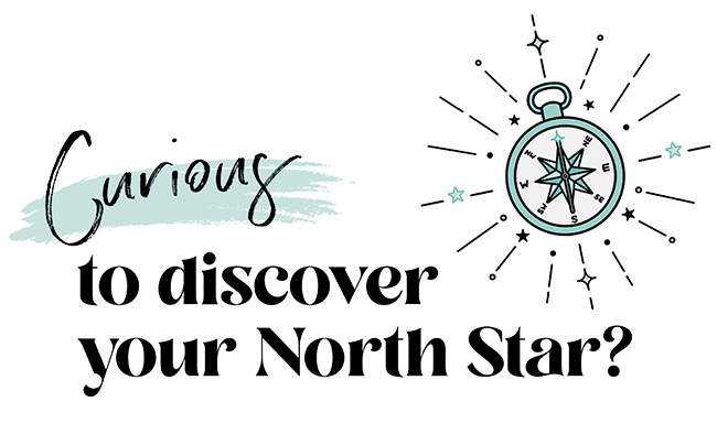 curious to discover your north star